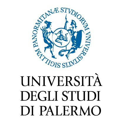 L'Università degli Studi di Palermo, fondata nel 1806, con i suoi oltre 40000 iscritti è uno degli 11 mega Atenei italiani. La sua offerta formativa comprende più di 130 corsi di studio, tra lauree triennali, magistrali e magistrali a ciclo unico