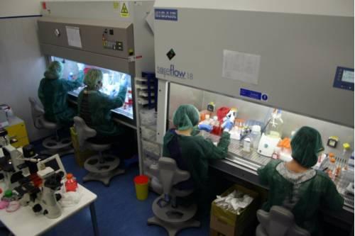 centro-oncogenomica-Policlinico